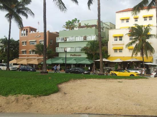 Pelican Hotel: dalla spiaggia