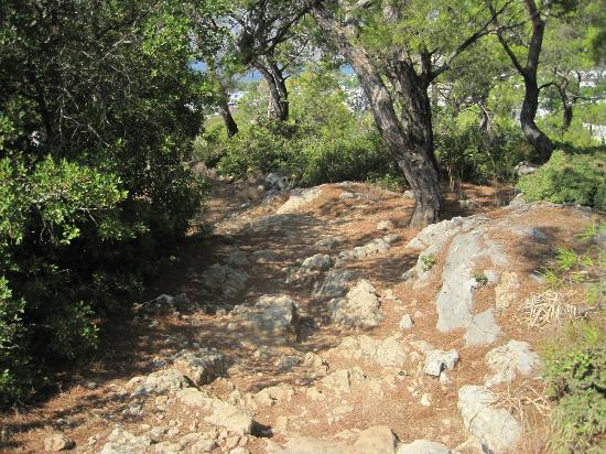 Hotel Ziakis: The infamous goat path