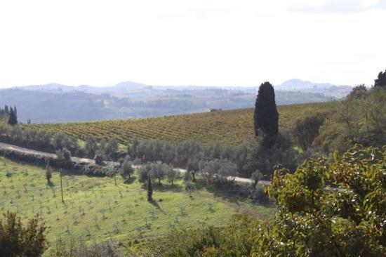 Villa le Corti - Principe Corsini: View from Villa Corsini