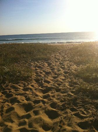 Culburra Beach Sunrise Walk
