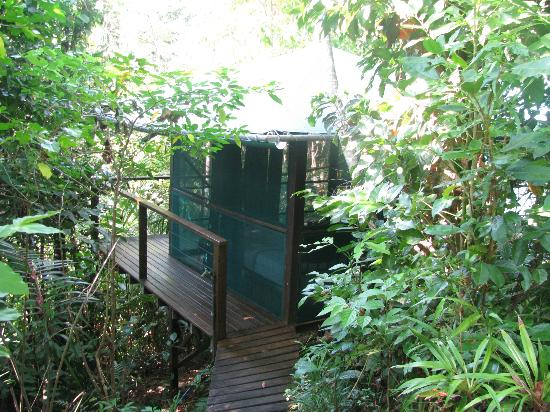 Sanctuary Retreat: A rainforest hut