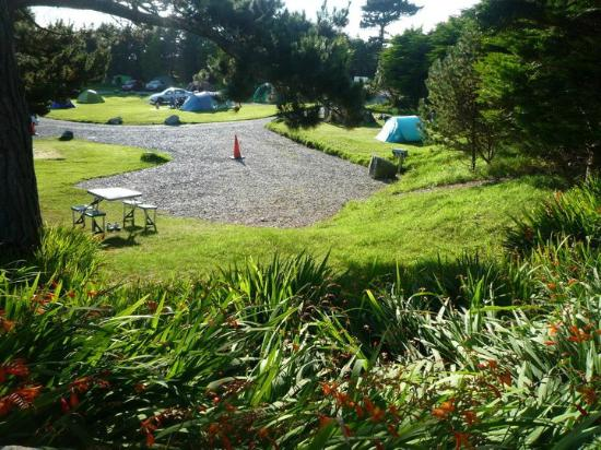 Clifden Camping and Caravan Park: hardstands and pitches