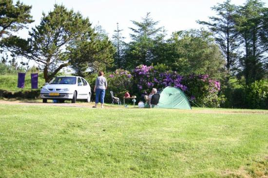 Clifden Camping and Caravan Park 이미지