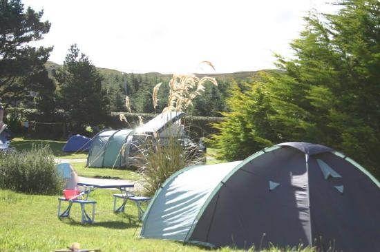 ‪‪Clifden Camping and Caravan Park‬: pitches‬