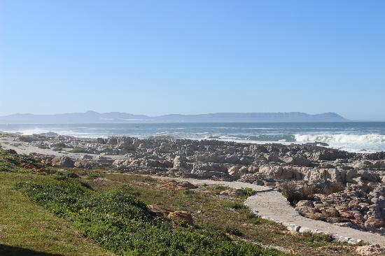 Hermanus Beach Club: Paved pathway along the shore