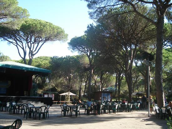 Marina di Grosseto, Italië: entertainment area