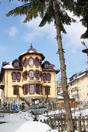 Pensiunea Casa Dunarea: getlstd_property_photo