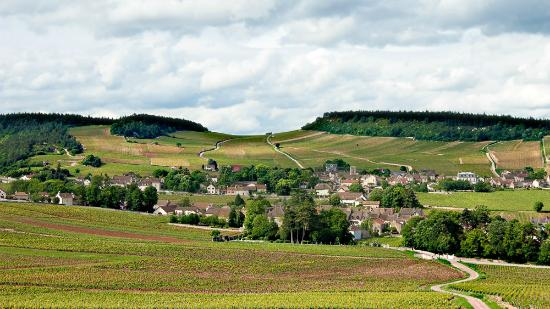 Burgundy, France: Mercurey