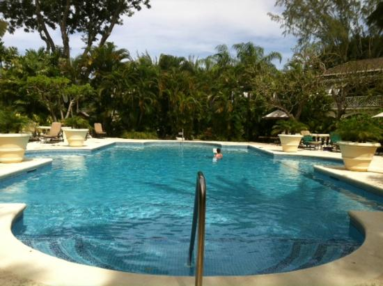 Coral Reef Club: Pool