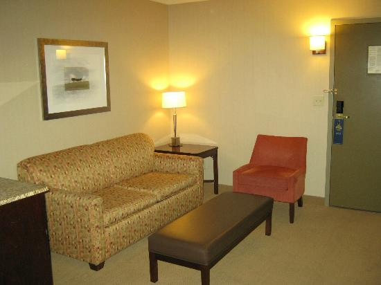 Hilton Winnipeg Airport Suites: sitting area