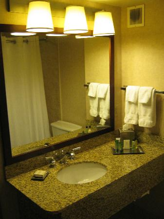 Hilton Winnipeg Airport Suites: bathroom sink