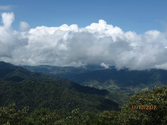Santa Lucia Cloud Forest : View from the room