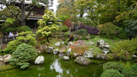 Delicieux Japanese Tea Garden At Golden Gate Park