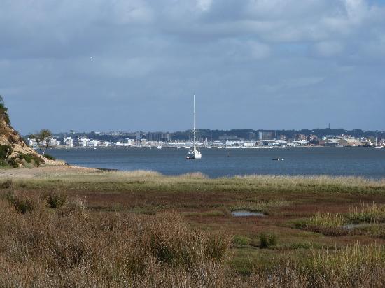 RSPB Arne: Looking across to Poole