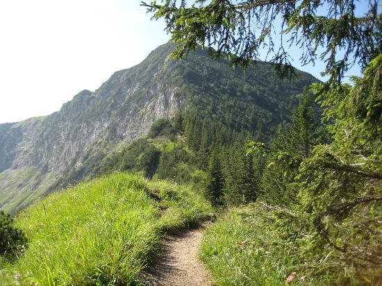 Berggasthof Rosengasse: Das Sudelfeld