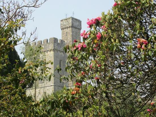 Lismore Castle Gardens & Gallery: een aangename wandeling