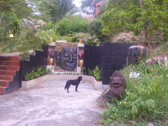 Ban Sua Samui: Bibi vom Strand, wie unsere Kinden den Hund tauften.