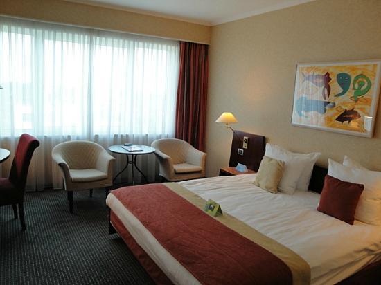 Radisson Blu Hotel Amsterdam Airport: Standard room
