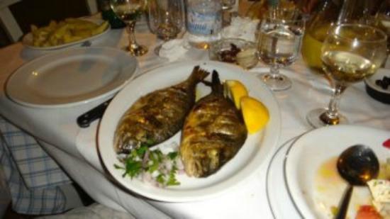 Mathios Taverna