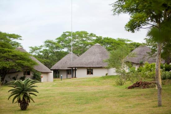 Zululand Safari Lodge: Rondavel styled rooms at Safari Lodge sprawled out on open Lawns
