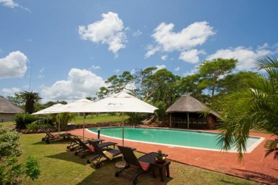 Zululand Safari Lodge: Pool area