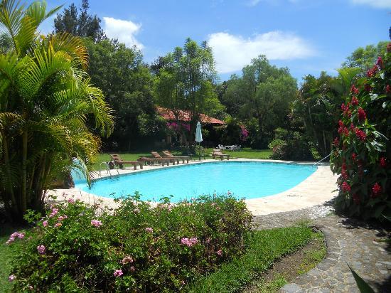 Hotel Real Plaza: piscina