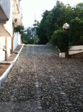 Playa Conchas Chinas Hotel: road up from hotel to main road