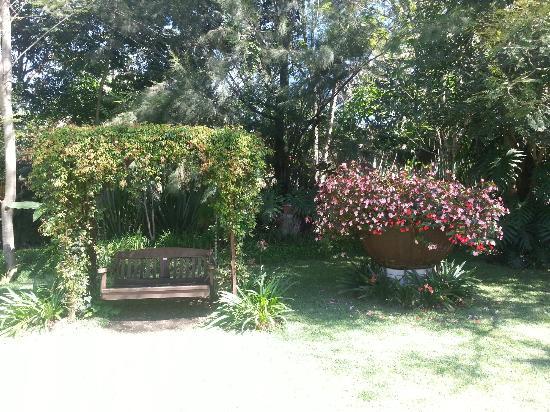 Hotel Real Plaza: jardín
