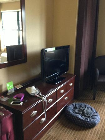 Extended Stay America - Fishkill - Westage Center: big tv