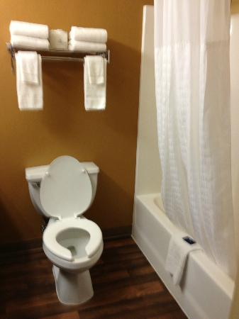 Extended Stay America - Fishkill - Westage Center: bathroom