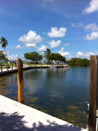Bahia Honda State Park Campgrounds: marina