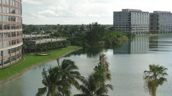 PULLMAN Miami Airport hotel: Vista da Blue Lagoon a partir do hall do hotel