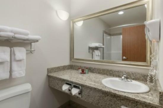 Ramada Creston: Standard bathroom
