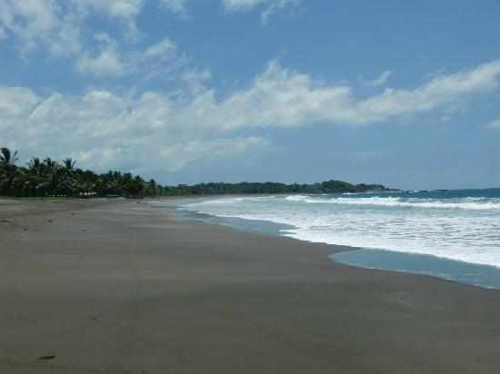 Mundo Milo Eco Lodge: Beach Playa Negra