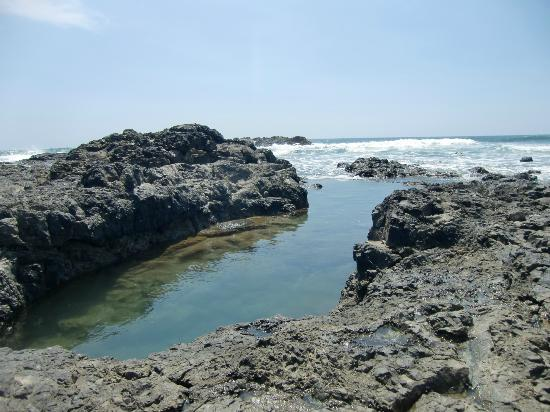 Mundo Milo Eco Lodge: Beach Playa Negra (tide pool)