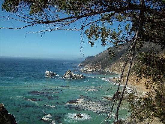 Ripplewood Resort: Big Sur Coastline
