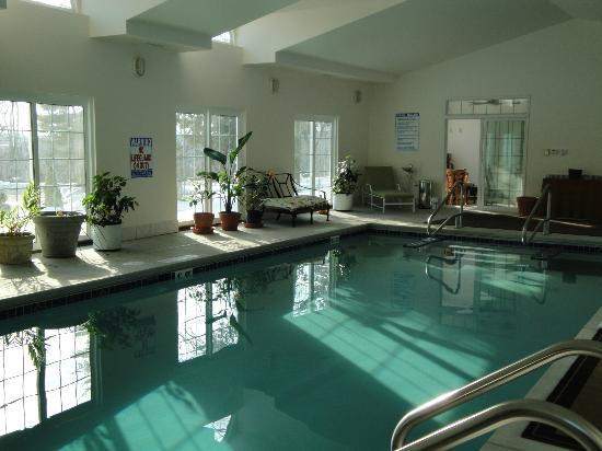 Ye Olde Manor House Bed and Breakfast: Indoor Heated Swimming Pool