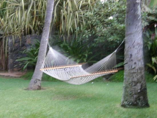 The Inn at Mama's Fish House: relax.....this is Hawaii !