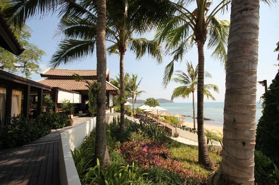 Anantara Lawana Koh Samui Resort : Restaurant and some of beach