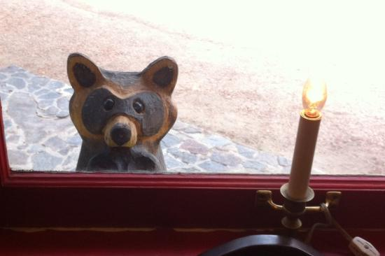 "Romantic Riversong Bed and Breakfast Inn : ""wooden"" racoon looking in at the dining room"