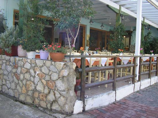 West Crete Restaurant: the yard