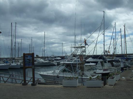 BelleVue Aquarius: puerto carseo