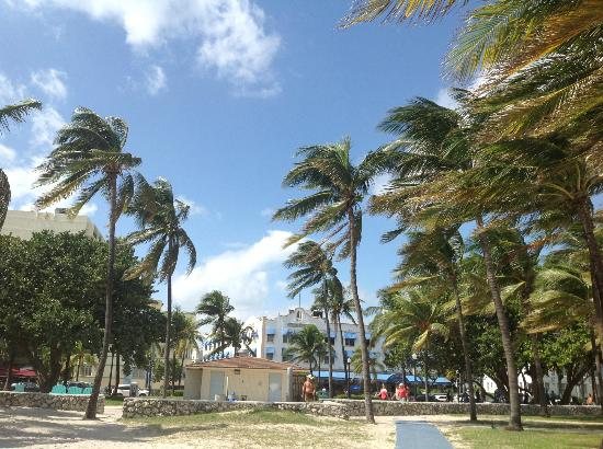 Ithaca of South Beach Hotel: The walk from the beach to the hotel