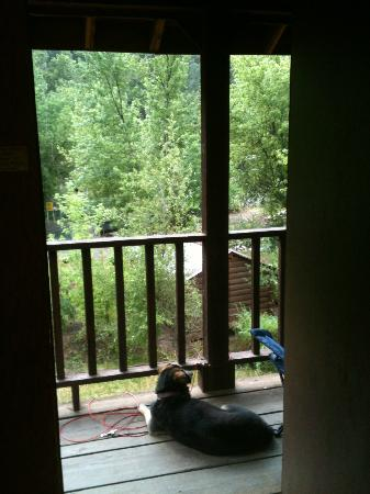 Lightner Creek Campground: view from inside cabin
