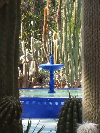 Riad Assakina: Majorelle Gardens