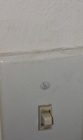 Wyndham Garden Dallas North: Filthy light switch and interior door
