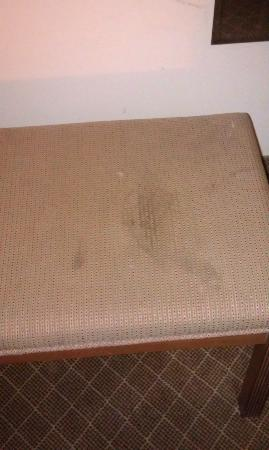 Wyndham Garden Dallas North: Soiled bench seat
