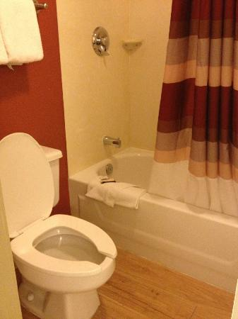 Red Roof Inn Lexington North: Clean bath/shower! Important