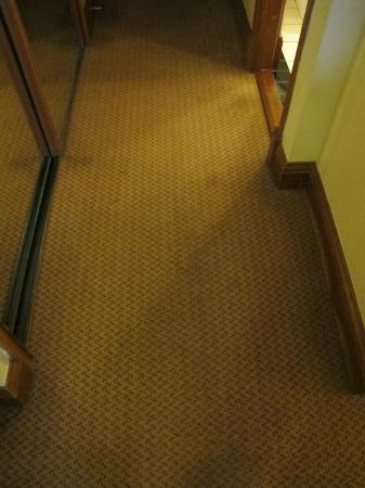 O'Callaghan Davenport Hotel: Dirty carpets