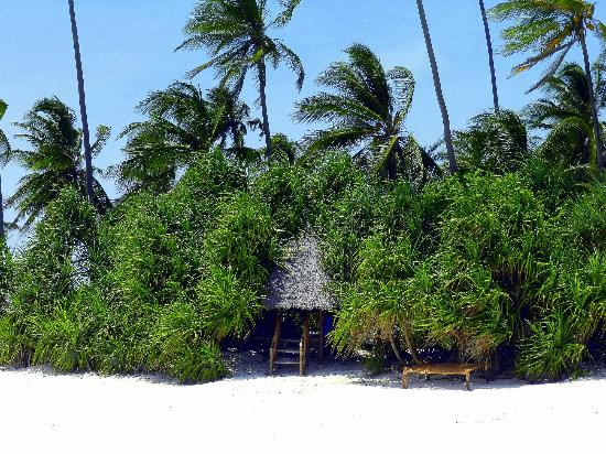 Matemwe Beach Village: plage Matemwe